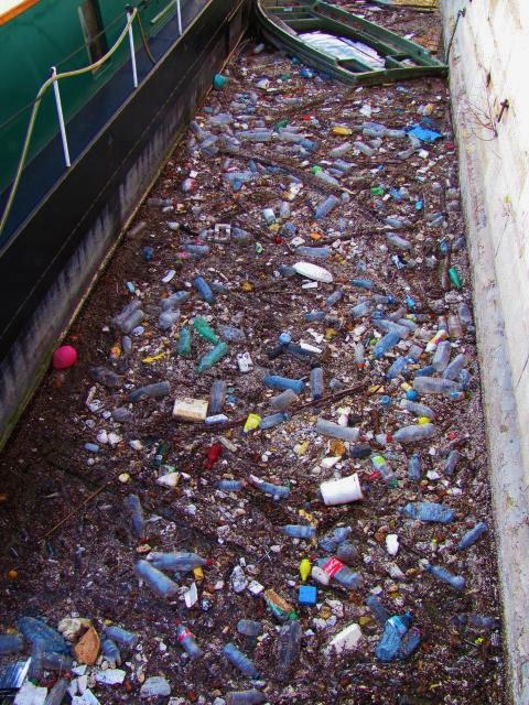 Seine, Paris, pollution, garbage
